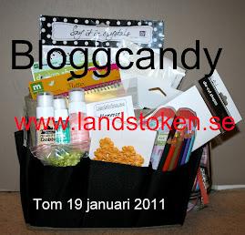 Bloggcandy 2011