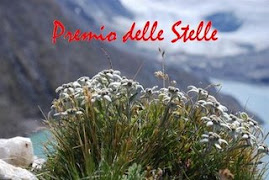 "An Award from Armanda Italy~""Premio delle Stella""...Thanks!"