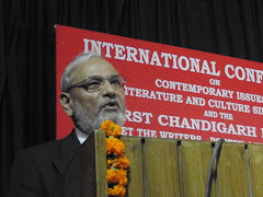Prof Harish Trivedi delivering the keynote address, MELUS/MELOW 2010