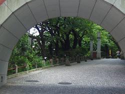 Mita Arch