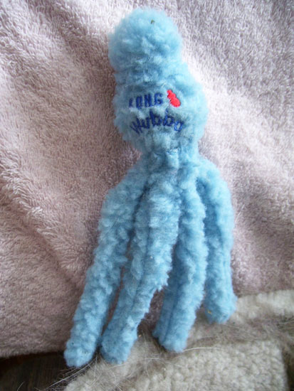 [16thBday-octopus.jpg]