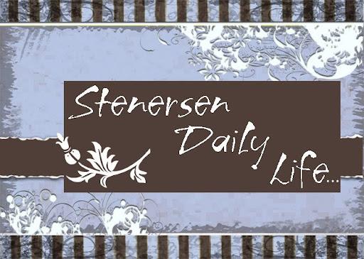Stenersen Daily Life