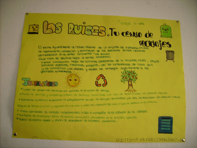 POSTER RUICES