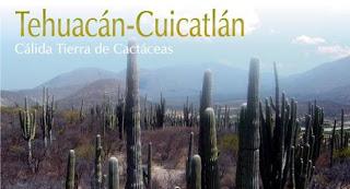 Tehuacan-Cuicatlán, ANP, reserva de la biosfera, mexico, Oaxaca, Puebla