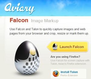 Aviary Falcon