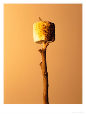 BINGO SUNDAY 11 HERE!! - Page 6 382590~Roasted-Marshmallow-on-a-Stick-Posters