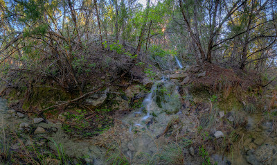 Bamberger Ranch, Upper Miller Creek, Warbler Trail Branch, Tributary. ©2007 Chris W. Johnson