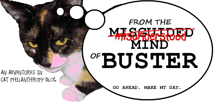 From the Misunderstood Mind of Buster