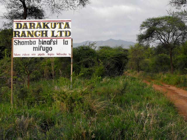 11 Decembre - Karibu Darakuta