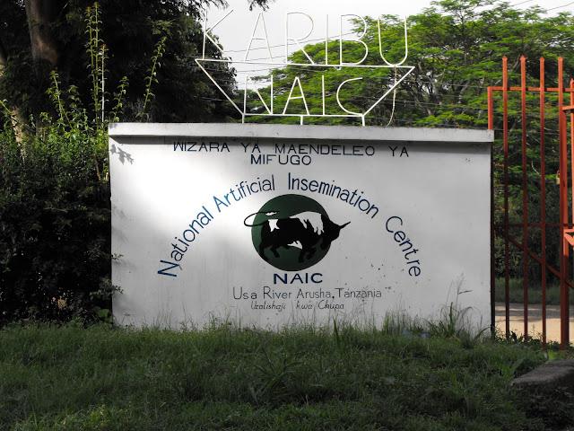 Karibu NAIC