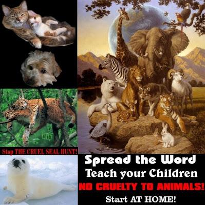 cruelty to animals essay for kids