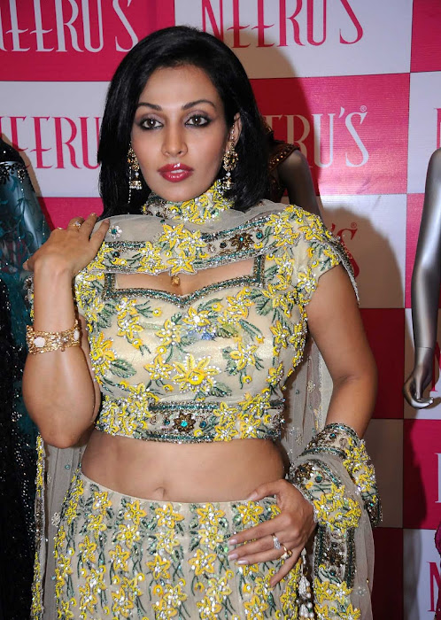 asha saini close up hot images