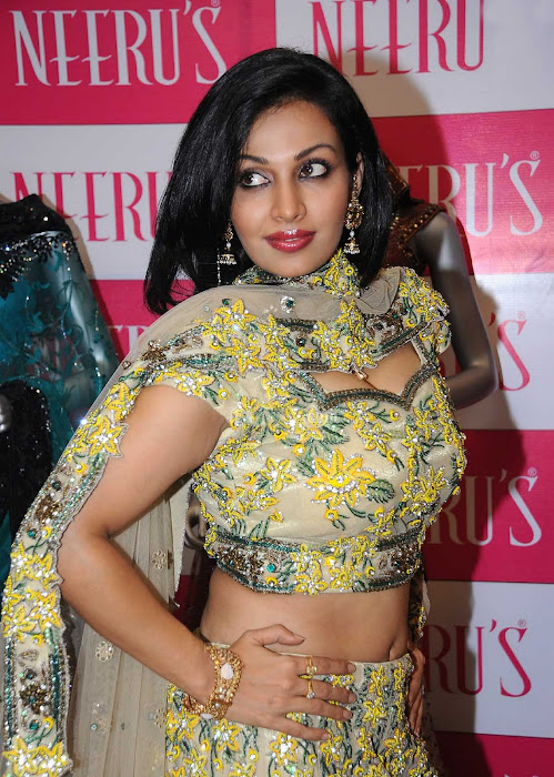 asha saini close up unseen pics