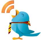 Siga Nosso Twitter: