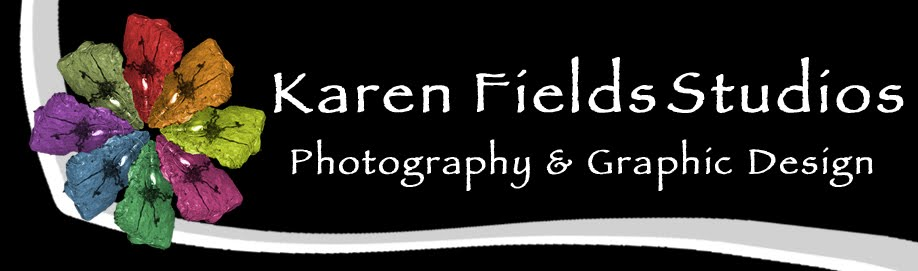 Karen Fields Studios