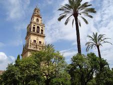 !No llores Córdoba,tu cultura milenaria ha sido la más importante de Europa ! No te iguala nadie.