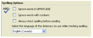 owa exchange 2003 spell check