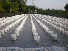 2000 Polybags Iqilagro