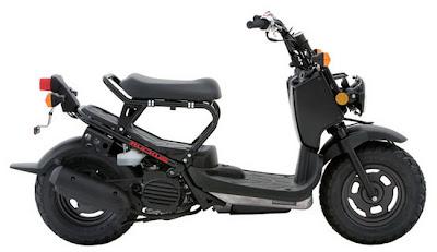 2011 Honda RuckusNPS50 black