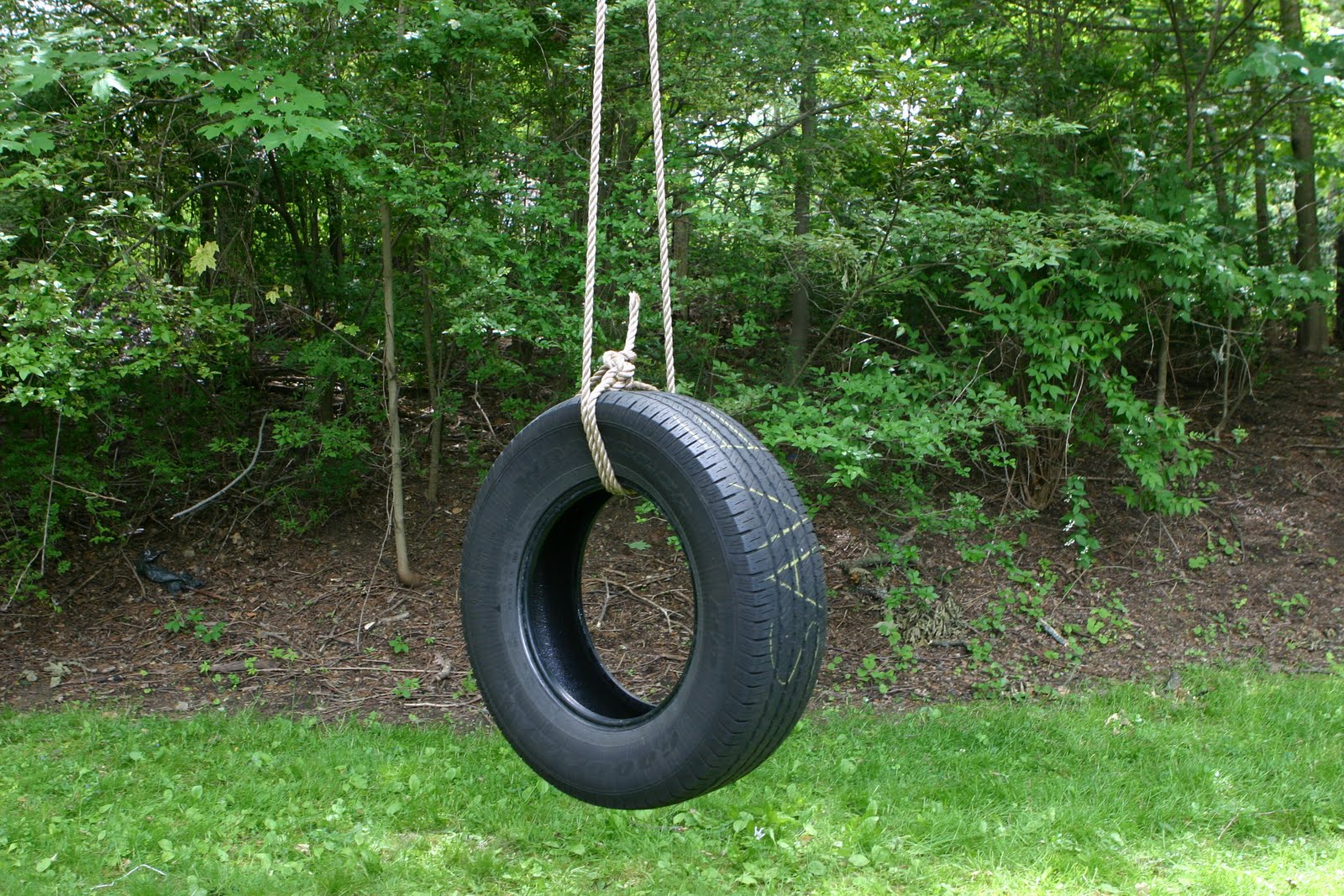 a little bit of nada a little bit of my tire swing