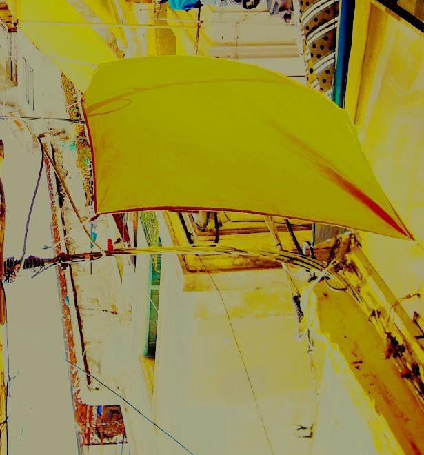 cel groc