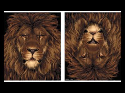 Le Lion Lion Et Rat Poème De Jean De La Fontaine