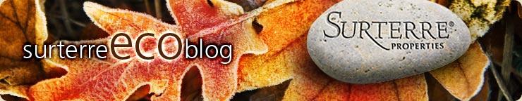 surterre ecoblog