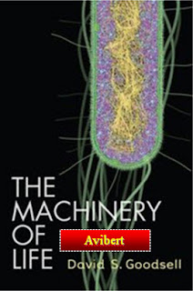 Machinery of Life