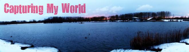 CAPTURING MY WORLD