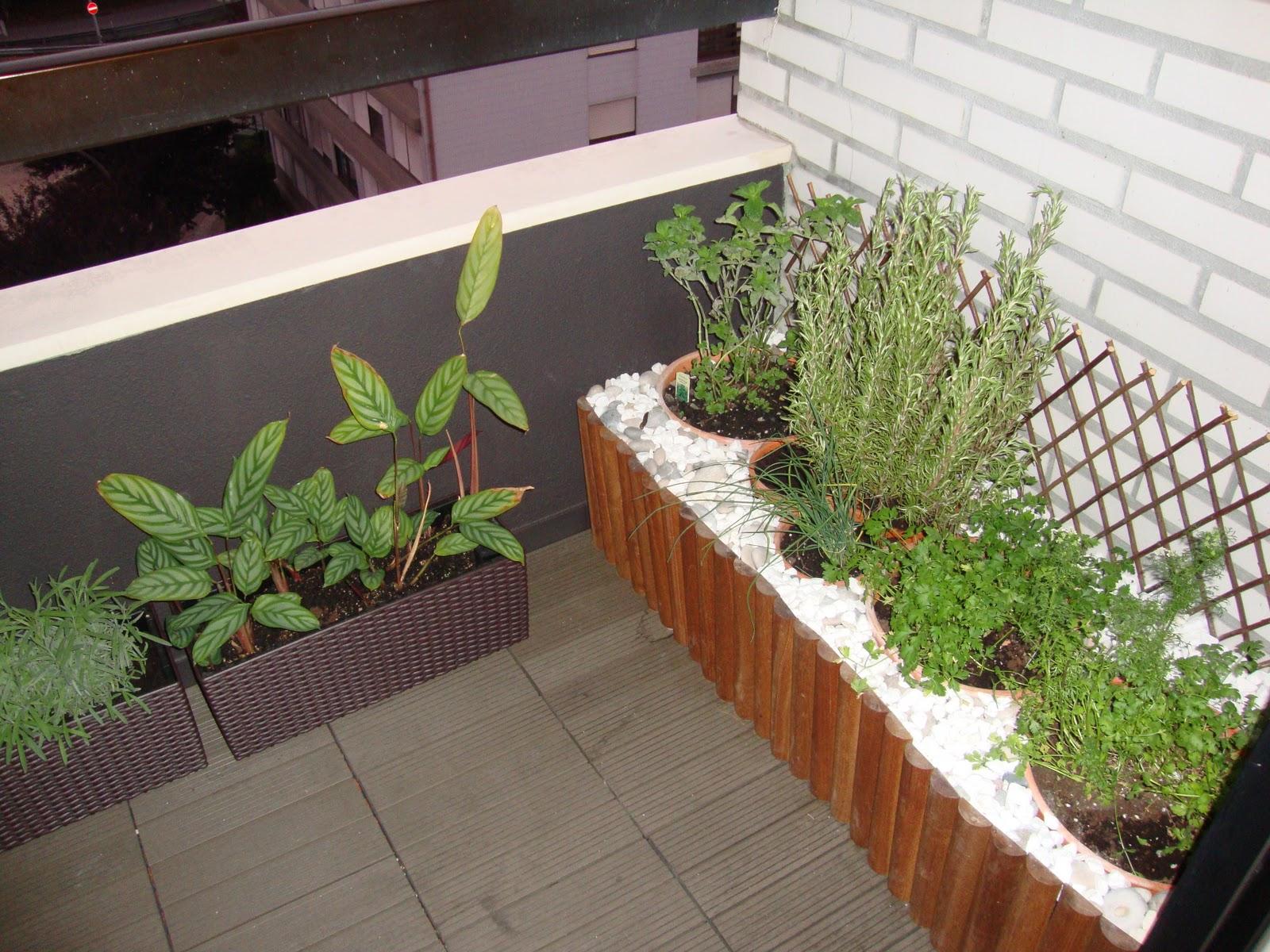 mini jardim ervas aromaticas ? Doitri.com