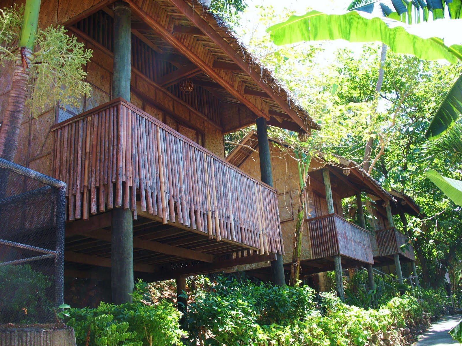 anilao batangas beach resorts   flock to eagle point resort