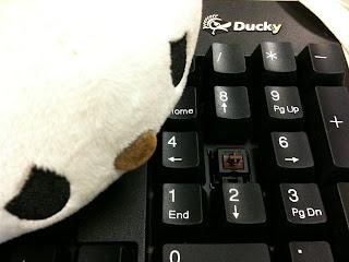 機械式鍵盤 Ducky DK-9000 (Cherry MX 茶軸) 軸心檢視