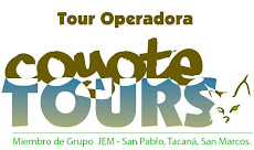 Coyote Tours