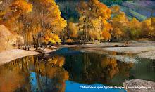 Зураач Наранцэцэгийн Тэрэлжийн намар хэмээх бүтээл