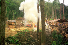 Police Attack The Penans With Tear Gas On Behalf Of Their Timber Tycoon Masters