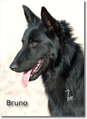 Padre:Bruno