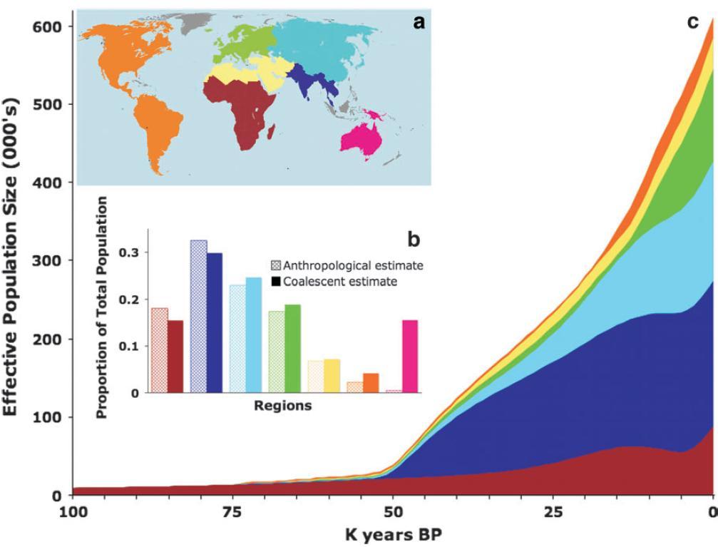 world population 2 essay