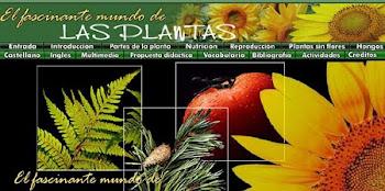 CASI TODO SOBRE PLANTAS
