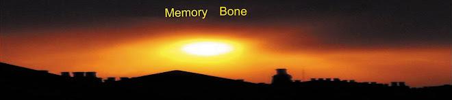 Memory Bone