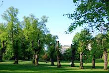Slottsparken i Oslo