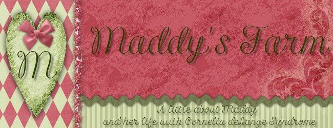 Maddy's Farm