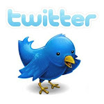 AvaDelicias Twitter
