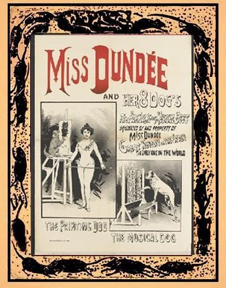MISS DUNDEE and her 8 DOGS!
