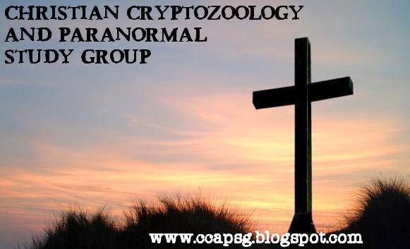 www.ccapsg.blogspot.com