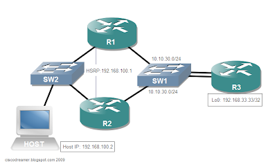 cisco routers provide ip sla responders that give accuracy of measured data across a network wikipedia
