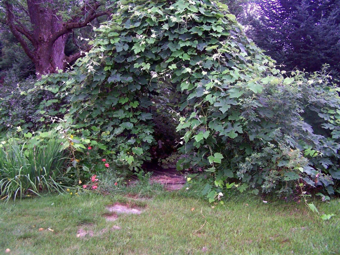 Restful Trails Food Forest Garden