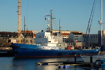 Eisvogel 2009 12 28 bremerhaven