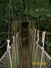 Kakum Canopy Wak