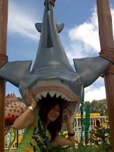 Arrrghh...Shark!!!its time for lunch...