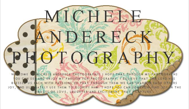 Michele Andereck Photography